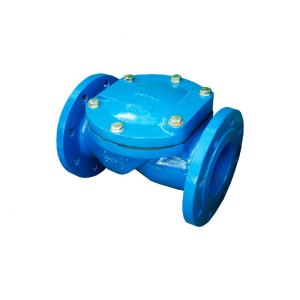 DRV Swing Check Valve