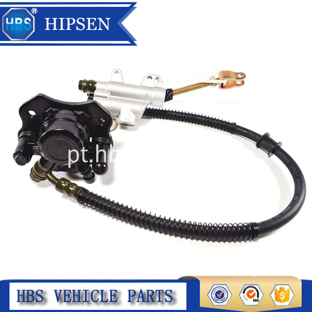 Master Cylinder With Brake Caliper Assy
