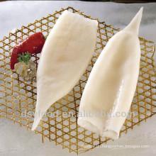 Gut behandelten hochwertigen gefrorenen Tintenfischröhrchen