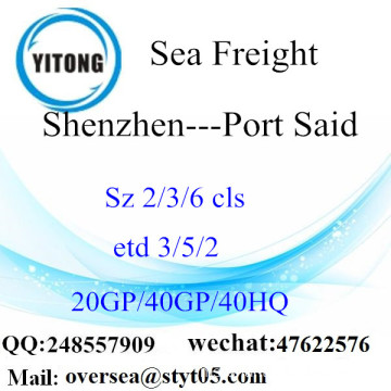 Shenzhen Port Sea Freight Shipping ke Port Said
