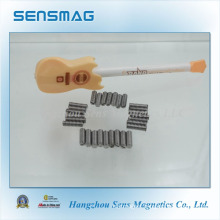 14 Years Experience in Permanent AlNiCo Magnet, Pickup Magnet