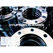 GOST 33259 TYPE 02 Flange