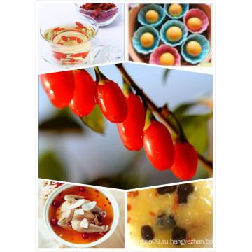 Ning Xia 2014 New Corp Goji Berry
