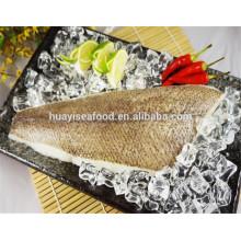 Novo fresco arrowtooth flounder filets para venda