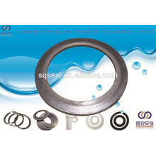 Container with spiral wound gasket