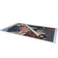 Materiales de cartel que hacen publicidad del rollo de la lona del arte de la etiqueta de la impresión digital