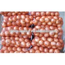 Exporter l'oignon frais à Qingdao en Chine