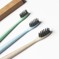 Brosse à dents capable de dégrader la paille de blé