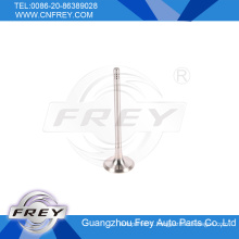 E34 E39 E38 X5 E53 OEM No. 11341435482 for Exhaust Valve