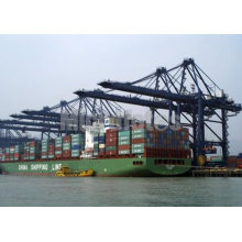 Shipping Agent / Lcl Sea Freight Forwarder / Shipping Service From China To Usa & Canada.