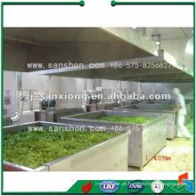 Máquina de Secagem Vegetal Industrial