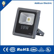 CE 220V IP66 COB 10W-30W Refresque la luz de inundación blanca del LED