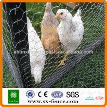Malla de alambre decorativo hexagonal de pollo (ISO9001: fabricante profesional 2008)