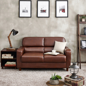 Italian 2-Pieces Sectional Leather Foam Sleeper Sofa