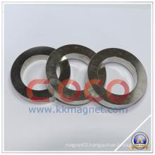 Ring Permament Magnet for Loudspeaker Material Magnet