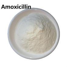 Stillen von Amoxicillin und Clavulanatpulver für Hunde