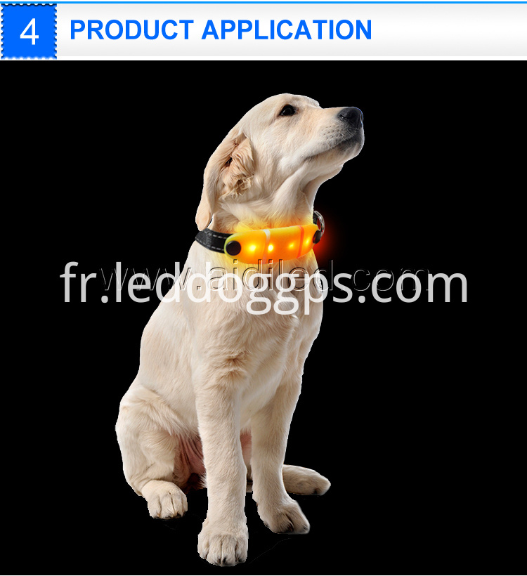 Rechargeable Glow Dog Collar