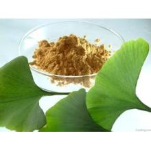 Ginkgo Biloba Extract 100% Through 80mesh Ginkgo Biloba