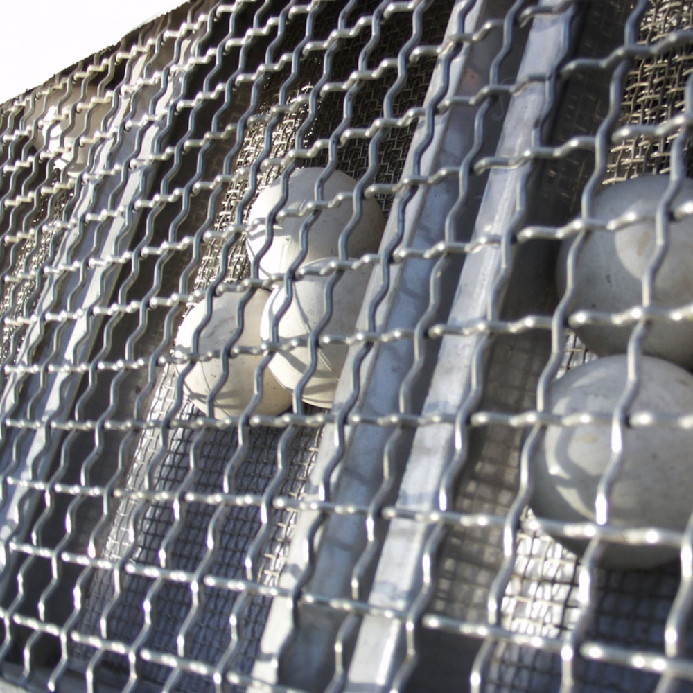 chicek house wire mesh