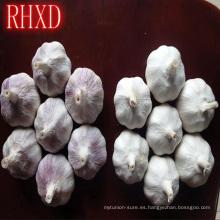 2017 clavos de ajo frescos de la granja de China