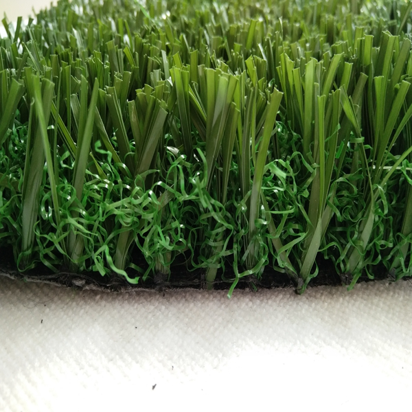 Nonfilling Football grass