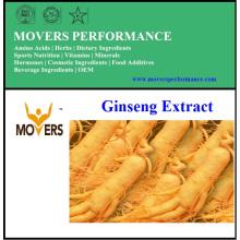 Reiner natürlicher Ginseng-Extrakt (Ginsenoside)