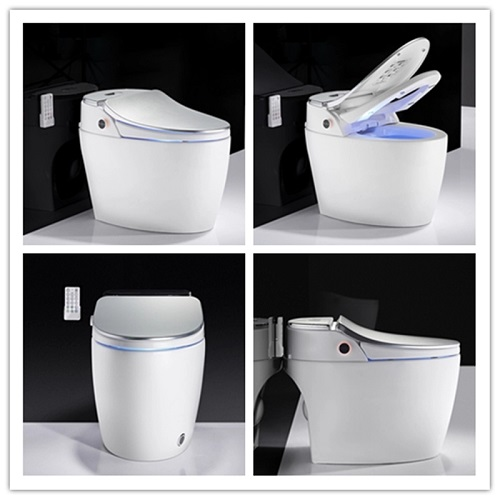 one- piece toilet