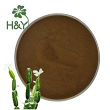 Extrait de plante populaire extrait de poudre de cissus quadrangularis