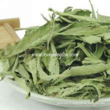 Stevia de la Chine