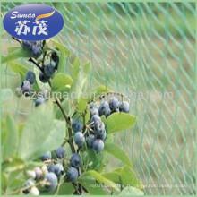 Fabrication anti-oiseau de maille de diamant vert, filet d'arbre de fruit de HDPE