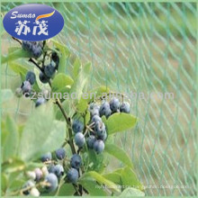 Diamond Green Mesh Anti Bird Netting , HDPE Fruit Tree Bird Netting