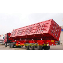Tri Axles 40 Ton Trailer Trak Dump Sampingan