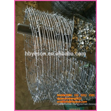 security single strand barb wire coil fence
