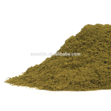 Best Selling Plant Extract bulk moringa leaf extract powder