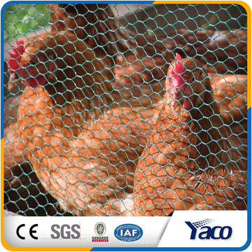 высокое качество Тип weave и полотняного переплетения стиль сетки Ловушка для Омара гексагональной сетки для защиты ферм забор курица