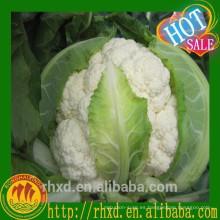 Coliflor fresca china / Venta de brócoli blanco