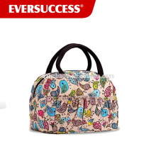 Fashion Lunch Bag for Women Cute Zipper Lunch Tote Bag Light Picnic Lunch Container