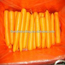 Китайский Красный Морковный