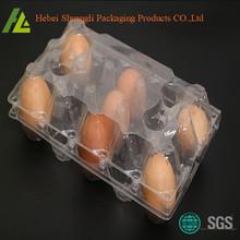Plastik Eier Clamshell Verpackung Tray