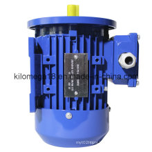 Industry Electric Motor B5 Installed Type for Exporting