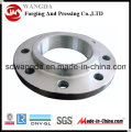 Petroleum Pipe Fitting Forgings Flange