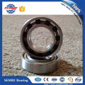 Zro2 Ball Nylon Cage Hybrid Ceramic Bearing (61804)