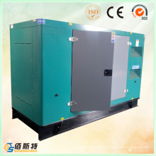 China 250kVA ATS Energía Eléctrica Soundproof Cummins Diesel Generating Set