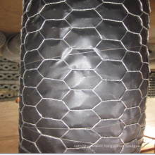 Galvanized Hexagonal Wire Netting From China Manufacture