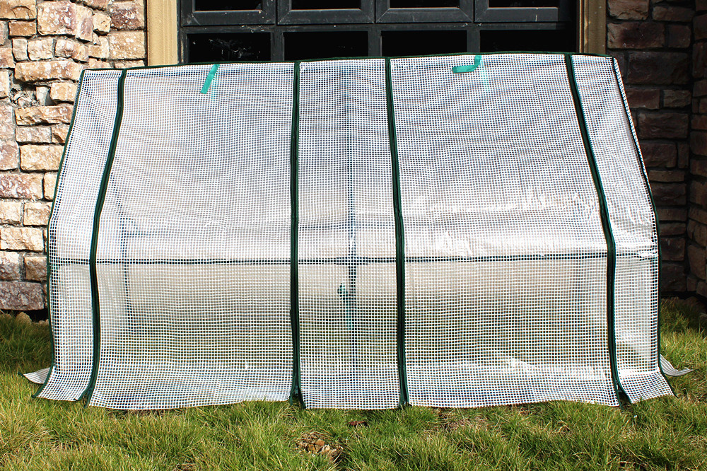 Small Size Single Film Greenhouse