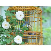 Новая клетка для птиц Стиль (ТС-Е129)