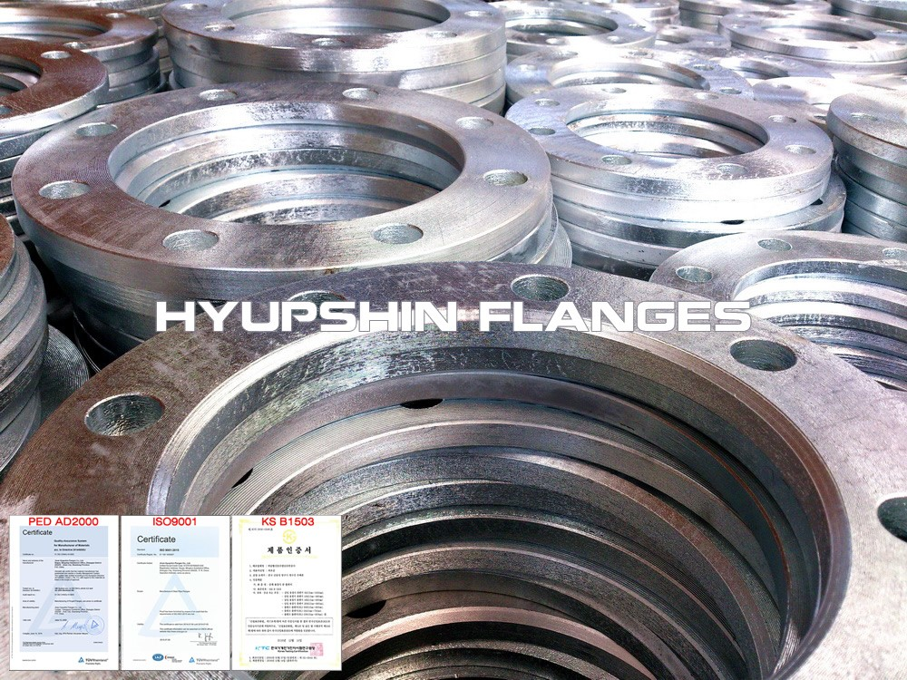 Hyupshin Flanges Backing Ring Hot Galvanizing