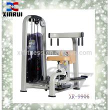 Équipement de gymnastique / équipement de forme physique pour le club / torse rotatoire (XR9906)