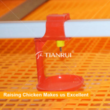 Китай Поставщик автоматические поилки кормушки для птицы для кур