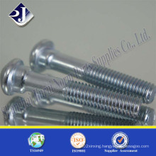 Fastener Lock Screw 8.8 Track Bolt (zinc plated)